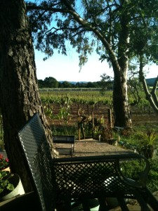 deck vineyard view